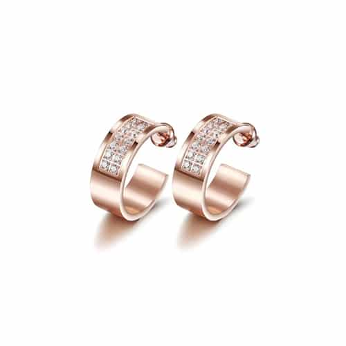 Two Row Pavé Set CZ Hoop