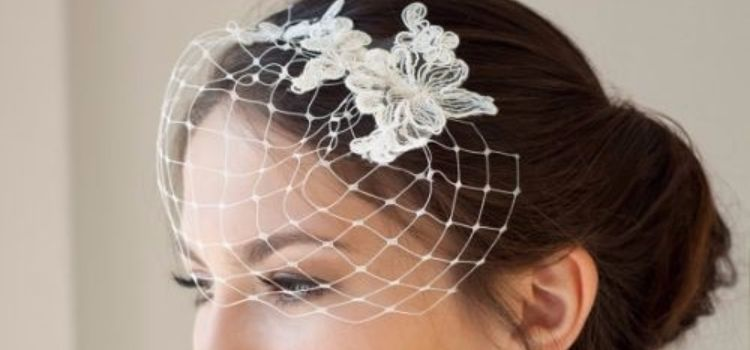 mini birdcage veil 1